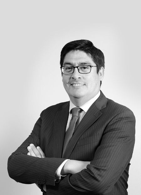Pedro  Huichalaf, Of Counsel